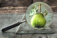 Pear & Magnifying Glass