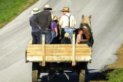 Amish Joy Ride
