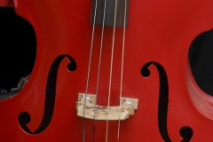 Assigned[Luba_Ricket]Cherry_Cello