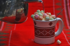 Assigned[Luba_Ricket]Hot_Chocolate_With_Lots_of_Marshmallows