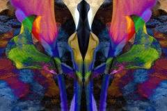 CPID[Luba_Ricket]Colorful_Callas