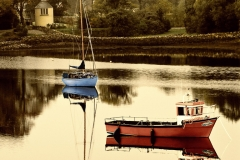 Quiet Harbour