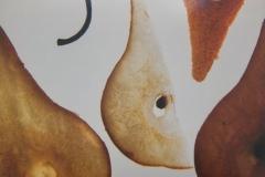 Pear Parts