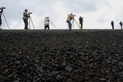Line Up Above Lava Rocks