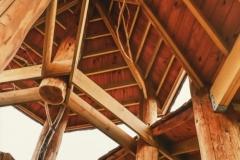 Tree House Roof
