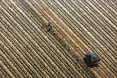 Schoharie Valley Potato Harvest