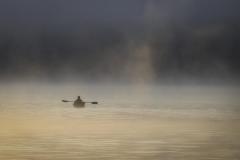 Foggy Morning Row