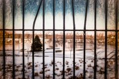 Fenced Against the Winter
