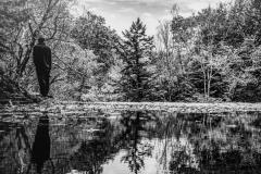 Water Edge Plotter Kill Falls