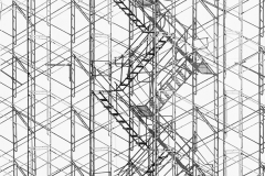 """Scaffold Steps"""