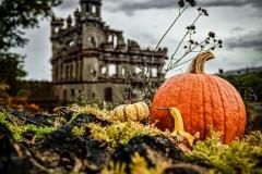 Bannermans Pumpkin