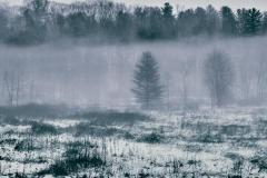Low Hanging Fog