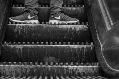 The Escalator