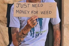 Just Need Money for Weed