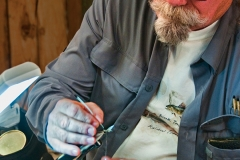 Tying a May Fly