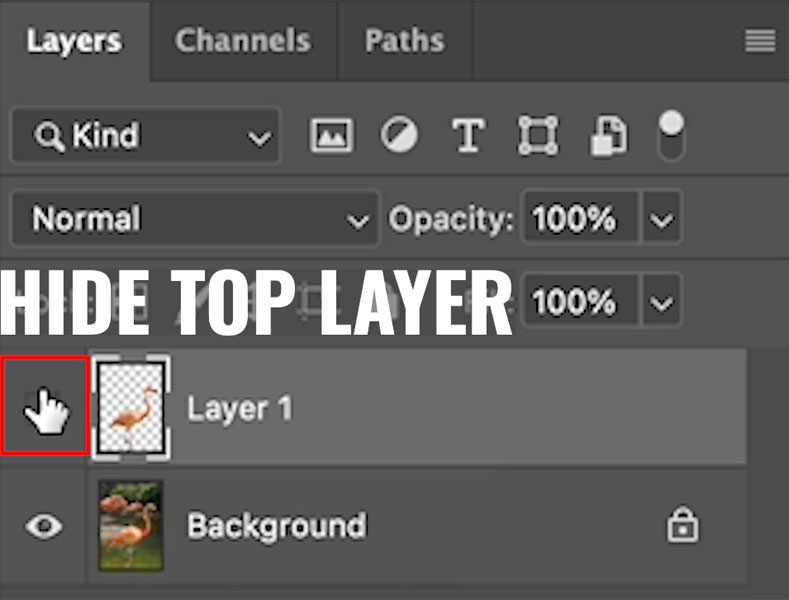 copy selection to a different layer